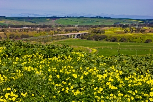 13090808 RR bridge at Fyansford web