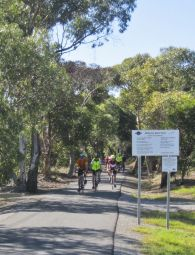 160320 Drysdale Rail Trail - Helen_0095acr edit