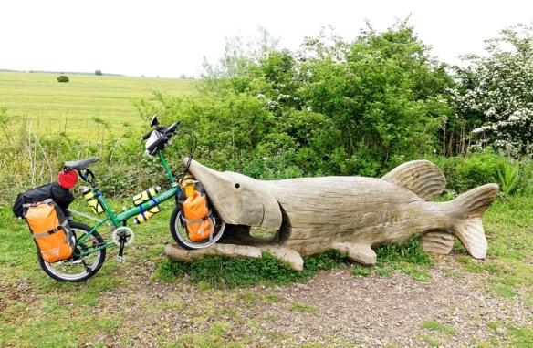 llama-eaten-by-fish
