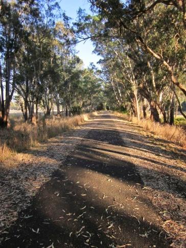 March 2016 Dave S MtoM Rail Trail 003